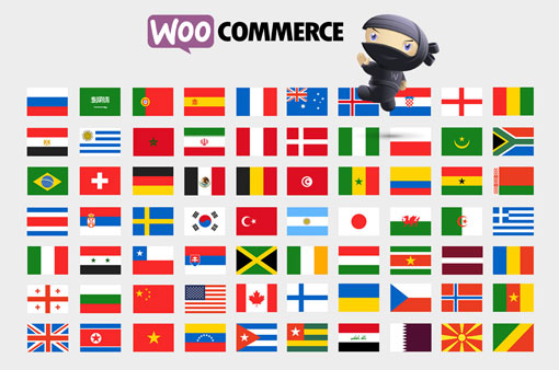 How to Translate WooCommerce Order Emails